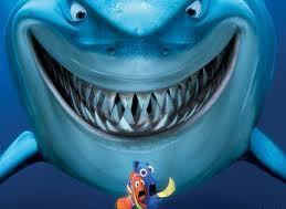 акула предпочтения