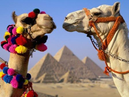 Туристу на заметку Египет