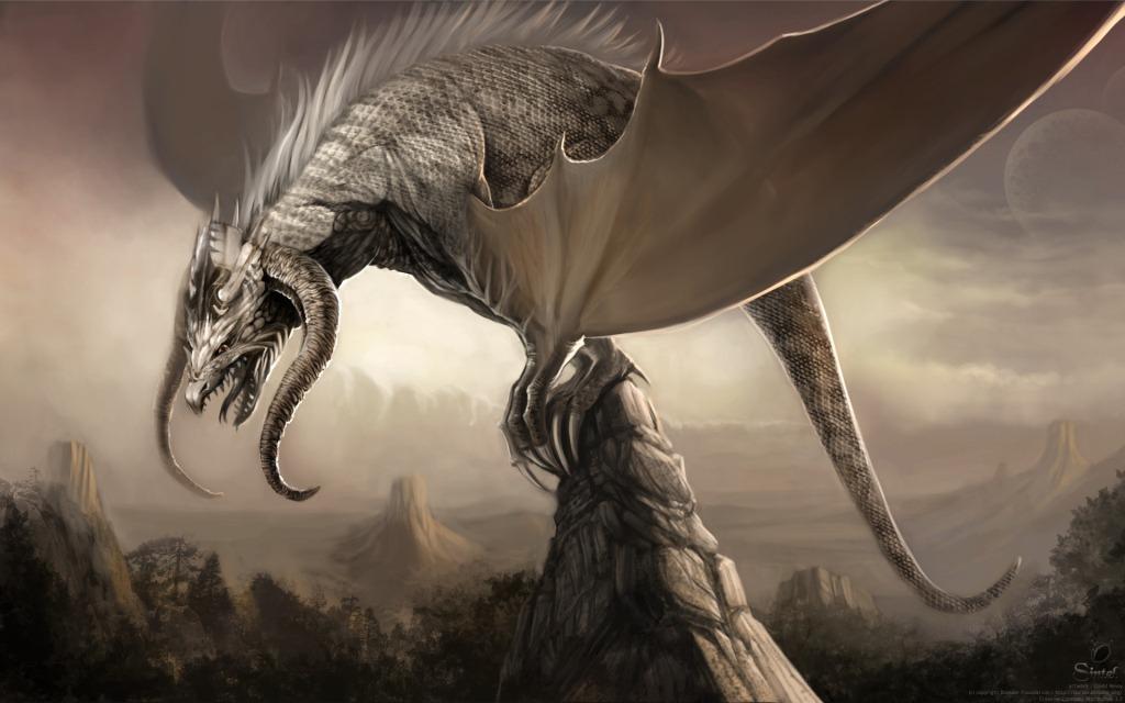драконы интересные факты